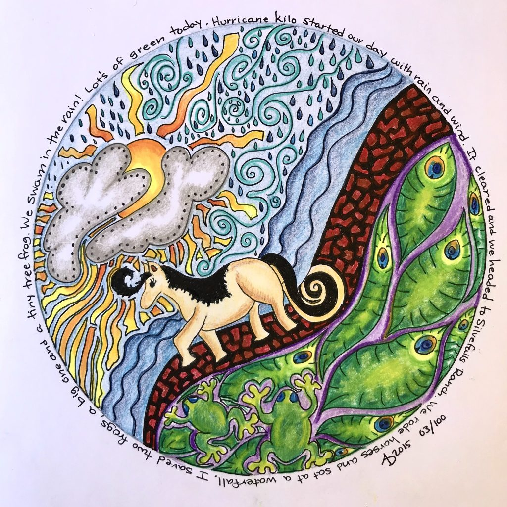 Original mandala drawing of a horse riding trip in Hawaii.  A horse walks along a dirt path with sun and ocean in the background.